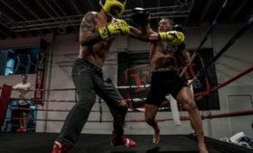 Покинувший MMAМакгрегор начал боксировать