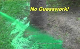 Жидкий газон Hydro Mousse: отзывы, стоит ли купить?
