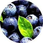 Экстракт из плодов черники входит в состав Визиума