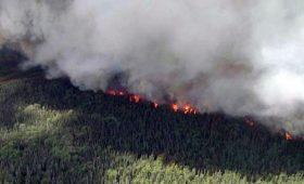 Пожары в Сибири. В чем вред смога для сердца и что делать?