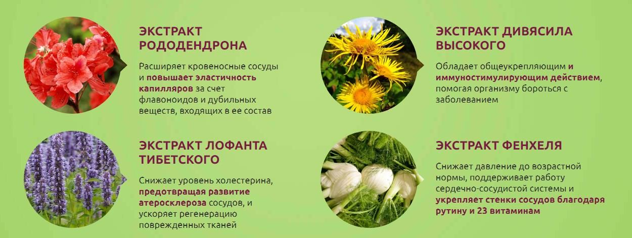 Гипертен состав нутрицевтика
