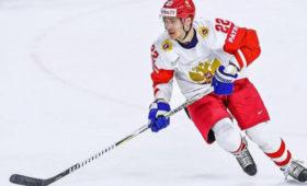Экс-жена хоккеиста Зайцева извинилась перед детьми заисторию спохищением