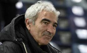 СМИ: экс-тренер сборной Франции пофутболу госпитализирован