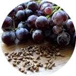 В составе препарата Гипертокс содержатся семена винограда